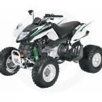 Artic Cat 300 DVX | We Buy ATVs